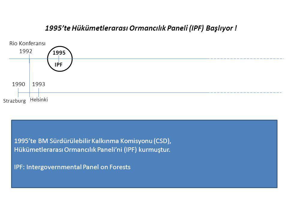 1995'te Hükümetlerarası Ormancılık Paneli (IPF) Başlıyor !