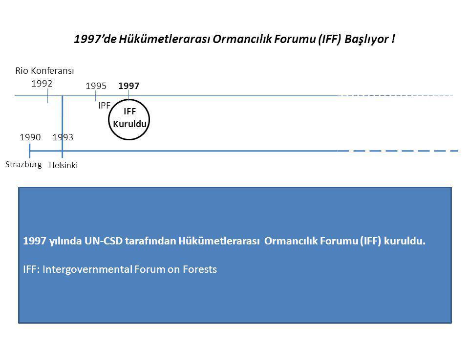 1997'de Hükümetlerarası Ormancılık Forumu (IFF) Başlıyor !
