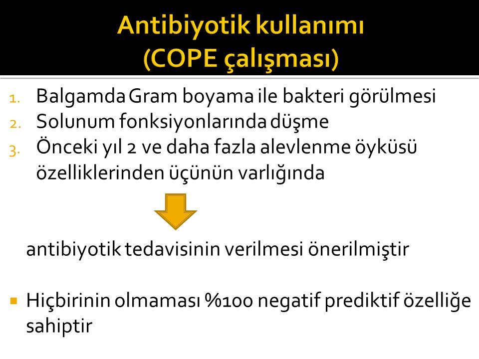 Antibiyotik kullanımı (COPE çalışması)