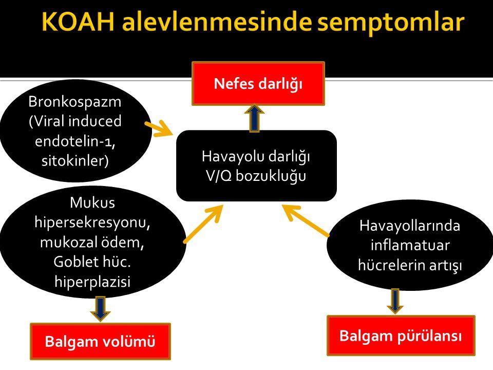 KOAH alevlenmesinde semptomlar