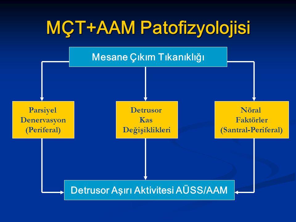 MÇT+AAM Patofizyolojisi
