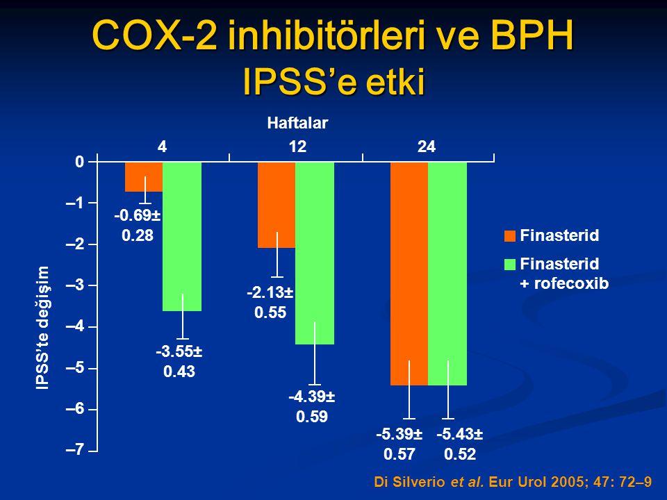 COX-2 inhibitörleri ve BPH IPSS'e etki