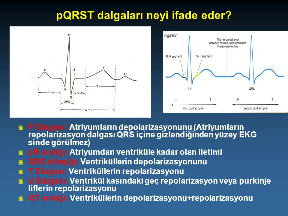 pQRST dalgaları neyi ifade eder