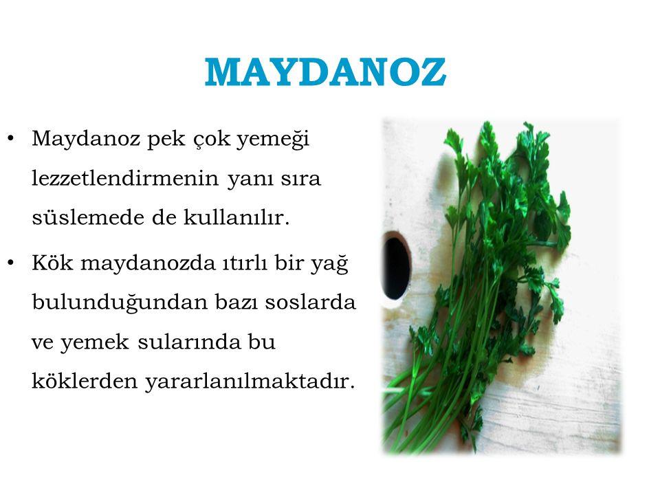 MAYDANOZ Maydanoz pek çok yemeği lezzetlendirmenin yanı sıra süslemede de kullanılır.