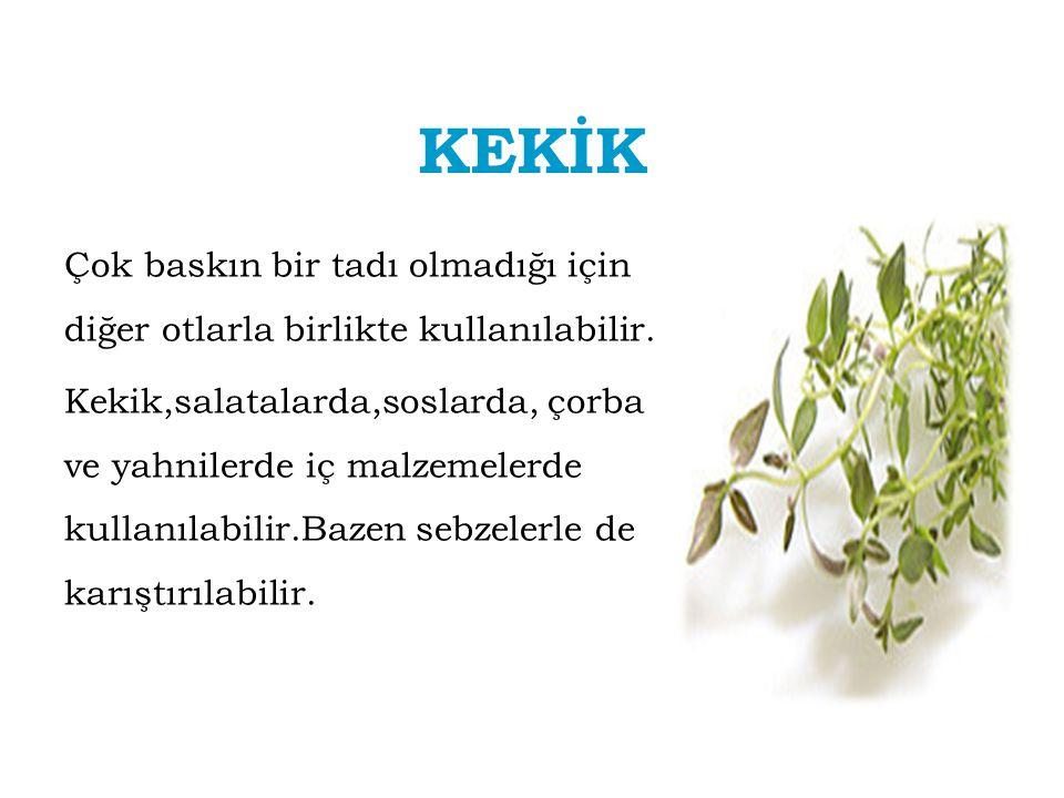 KEKİK