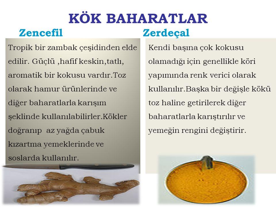 KÖK BAHARATLAR Zencefil Zerdeçal