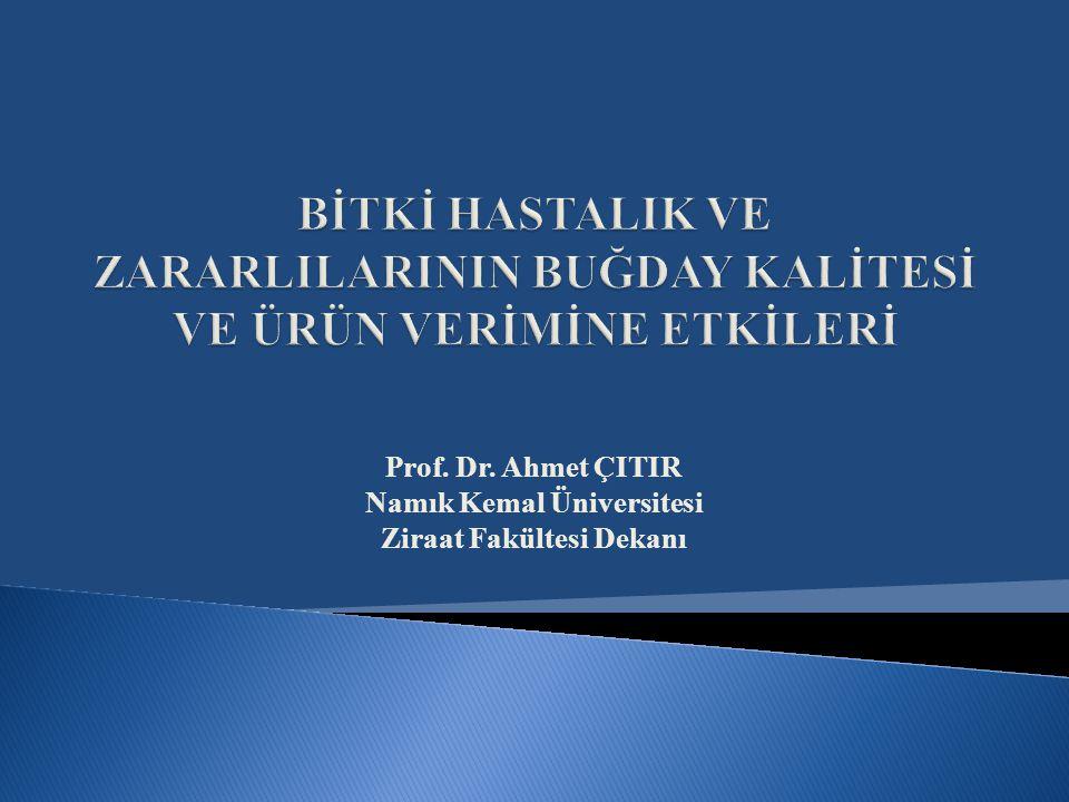 Prof. Dr. Ahmet ÇITIR Namık Kemal Üniversitesi Ziraat Fakültesi Dekanı