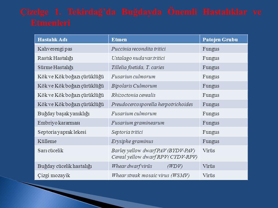 Çizelge 1. Tekirdağ'da Buğdayda Önemli Hastalıklar ve Etmenleri