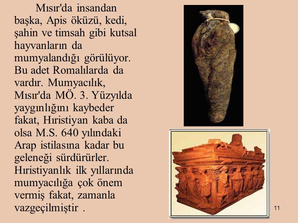 Mısır da insandan başka, Apis öküzü, kedi, şahin ve timsah gibi kutsal hayvanların da mumyalandığı görülüyor.