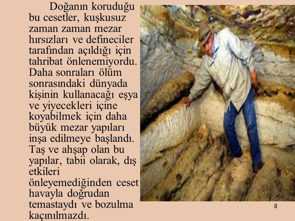 Doğanın koruduğu bu cesetler, kuşkusuz zaman zaman mezar hırsızları ve defineciler tarafından açıldığı için tahribat önlenemiyordu.