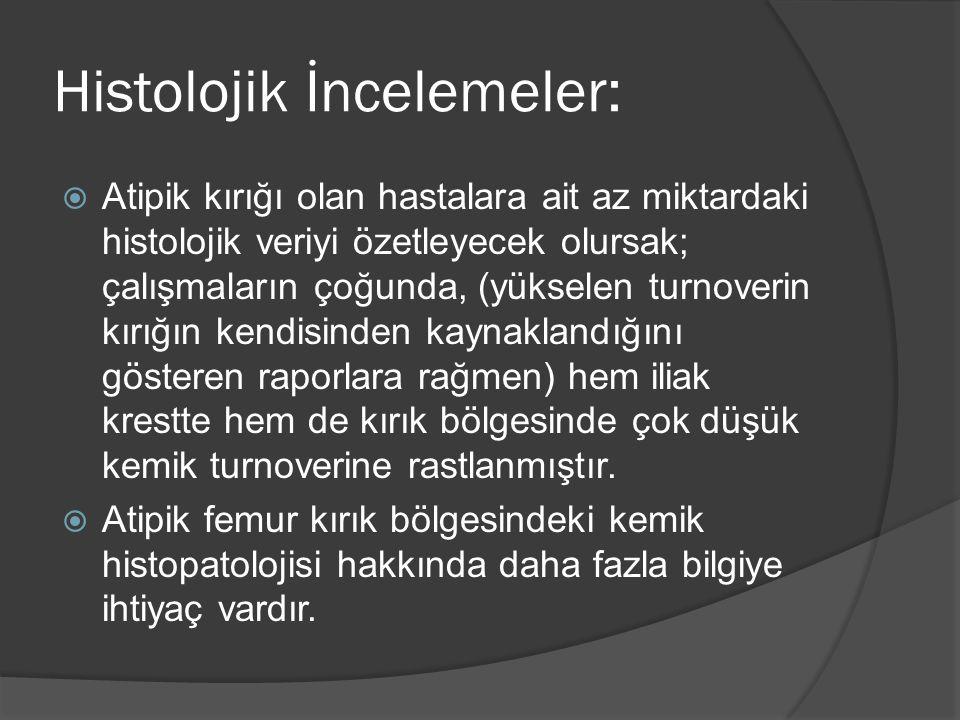 Histolojik İncelemeler: