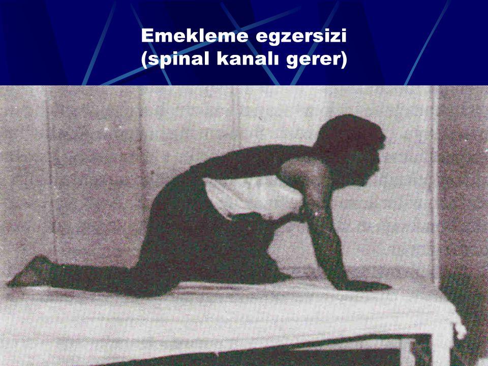 Emekleme egzersizi (spinal kanalı gerer)