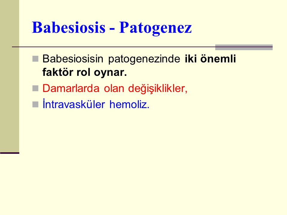 Babesiosis - Patogenez