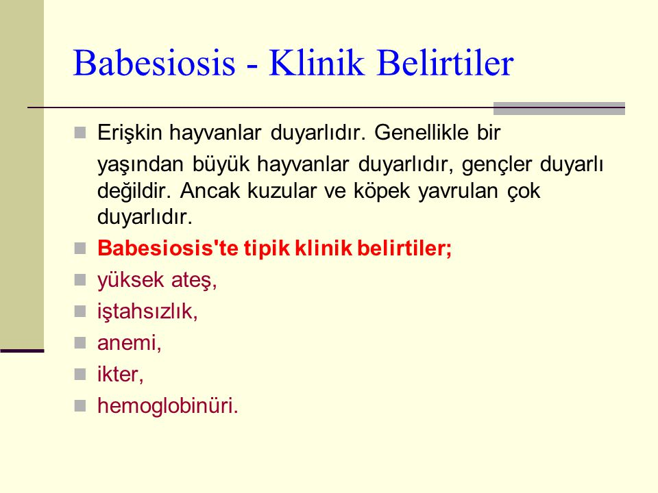 Babesiosis - Klinik Belirtiler