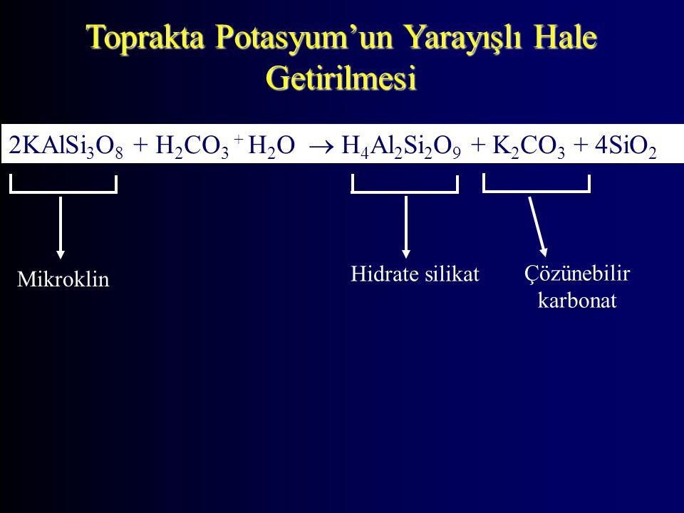 Toprakta Potasyum'un Yarayışlı Hale Getirilmesi