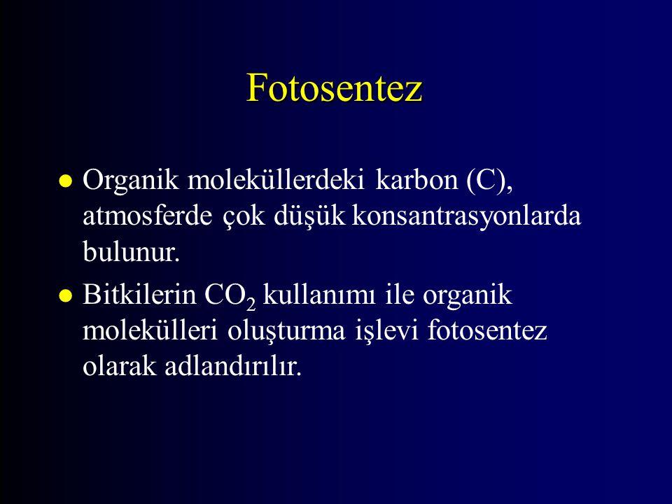 Fotosentez Organik moleküllerdeki karbon (C), atmosferde çok düşük konsantrasyonlarda bulunur.