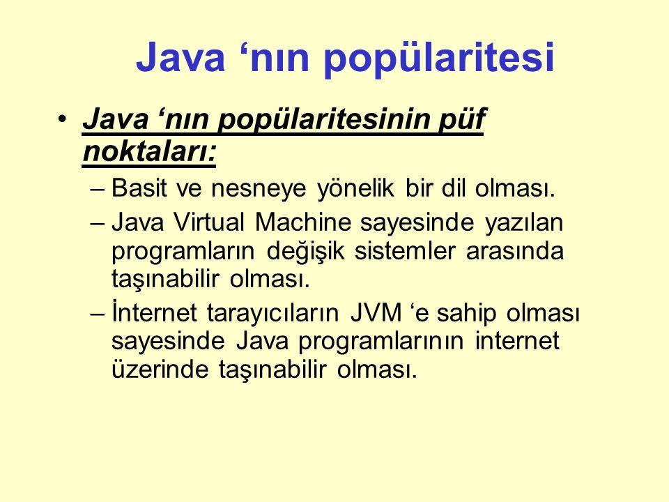 Java 'nın popülaritesi