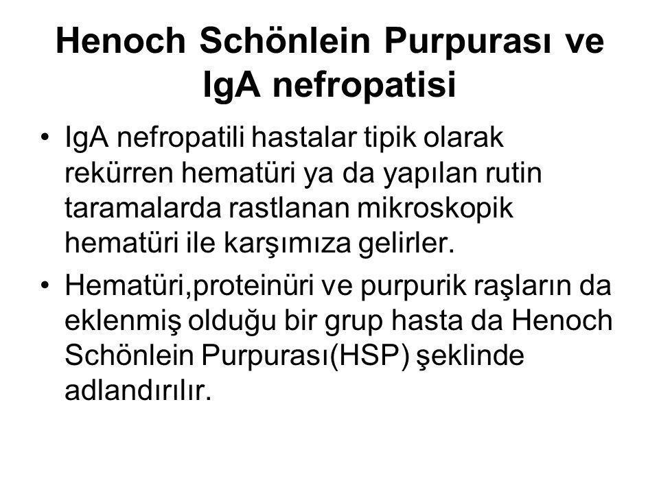 Henoch Schönlein Purpurası ve IgA nefropatisi