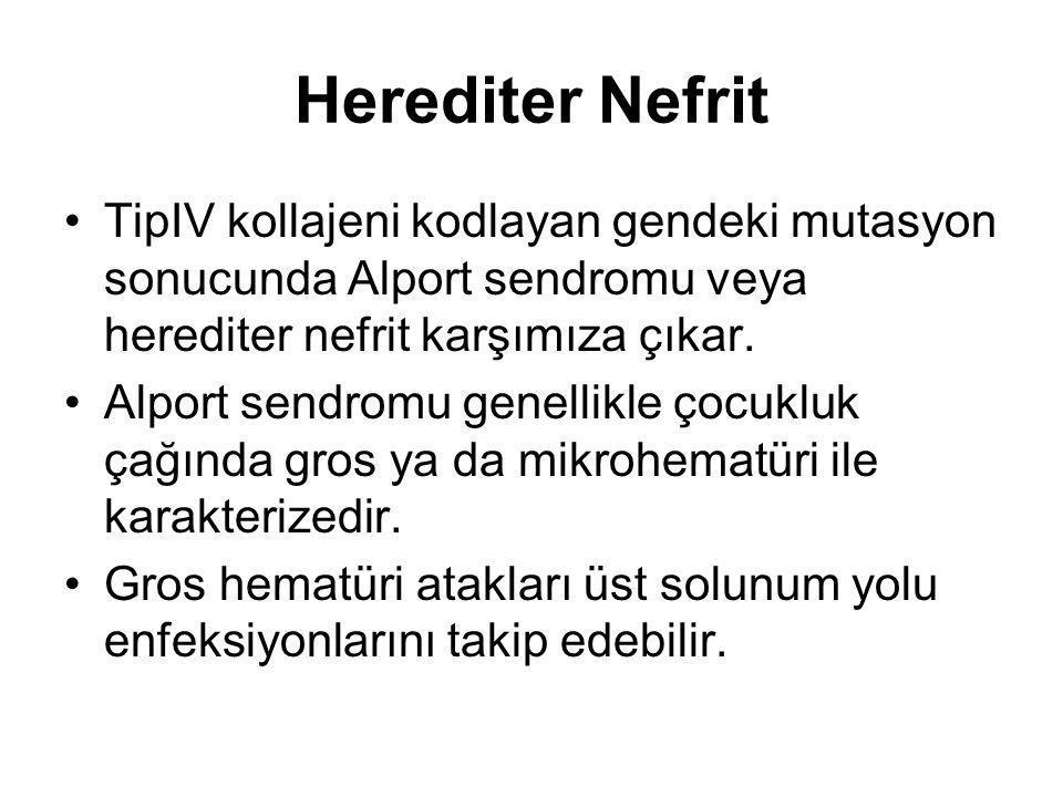 Herediter Nefrit TipIV kollajeni kodlayan gendeki mutasyon sonucunda Alport sendromu veya herediter nefrit karşımıza çıkar.