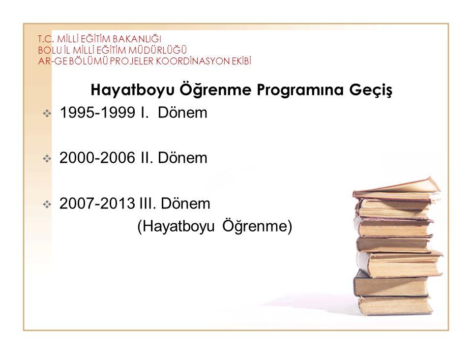 Hayatboyu Öğrenme Programına Geçiş 1995-1999 I. Dönem