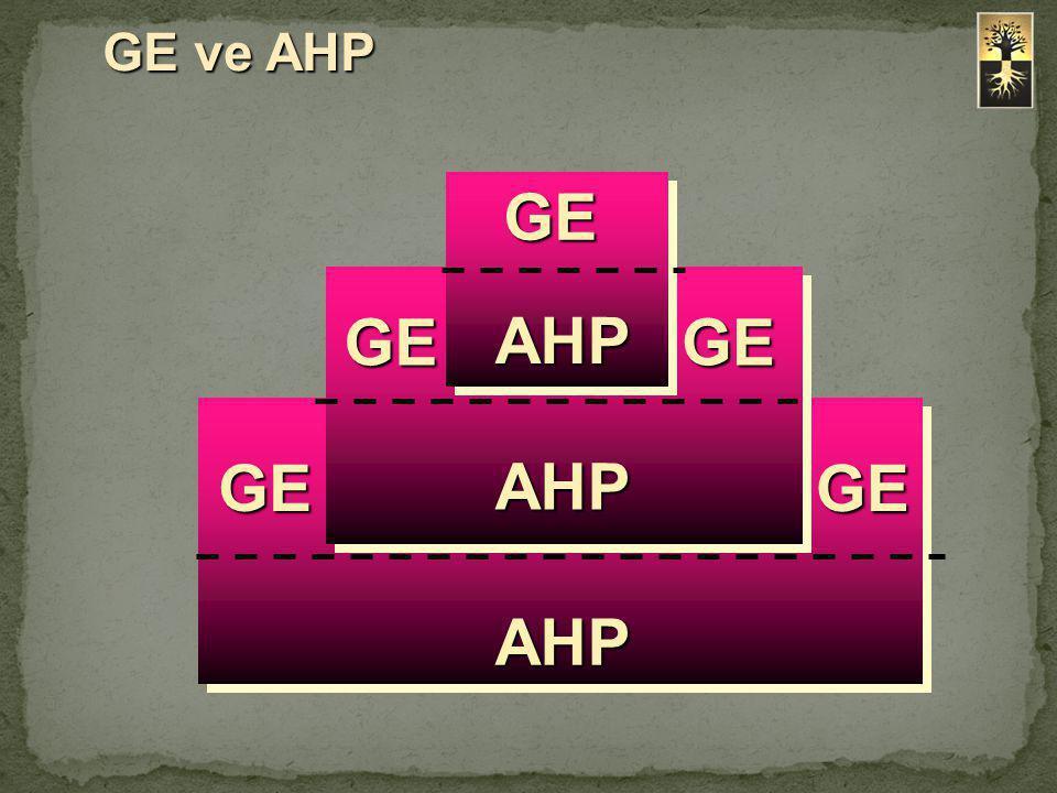 GE ve AHP GE AHP