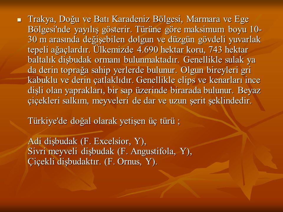 Trakya, Doğu ve Batı Karadeniz Bölgesi, Marmara ve Ege Bölgesi nde yayılış gösterir.