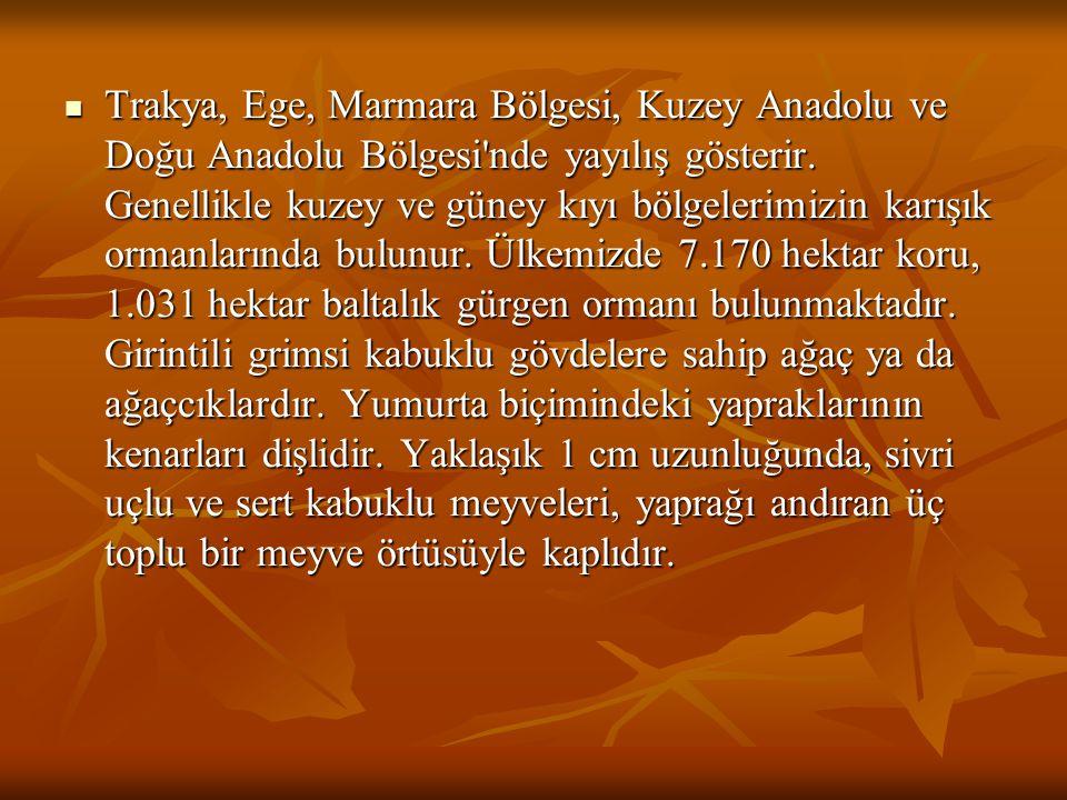 Trakya, Ege, Marmara Bölgesi, Kuzey Anadolu ve Doğu Anadolu Bölgesi nde yayılış gösterir.