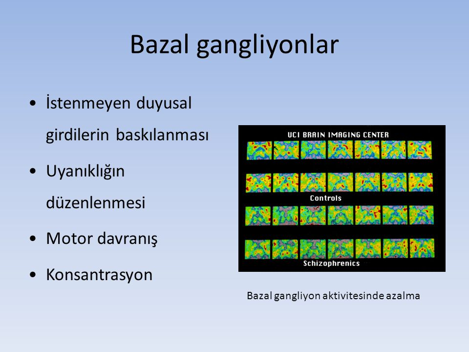 Bazal gangliyonlar İstenmeyen duyusal girdilerin baskılanması
