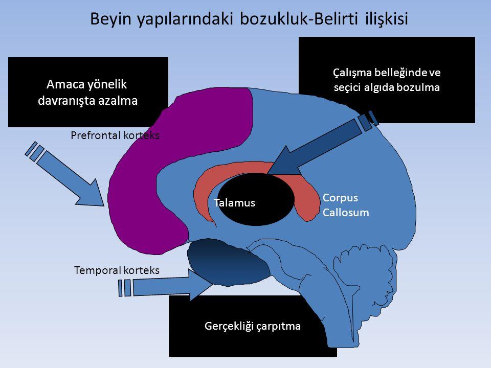 Beyin yapılarındaki bozukluk-Belirti ilişkisi