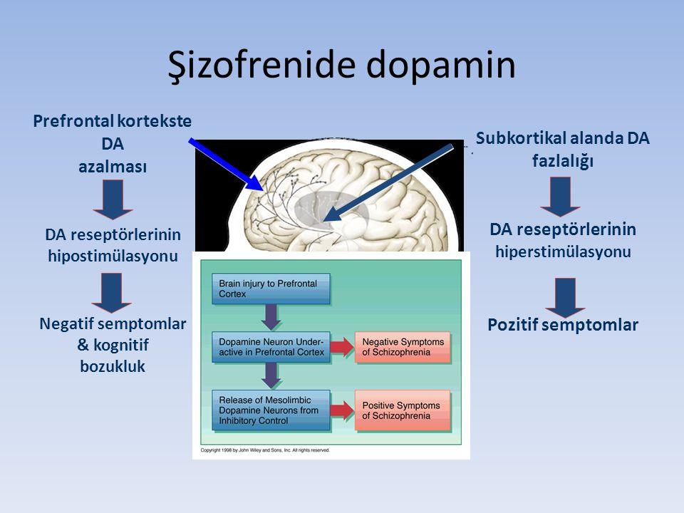 Şizofrenide dopamin Prefrontal kortekste DA