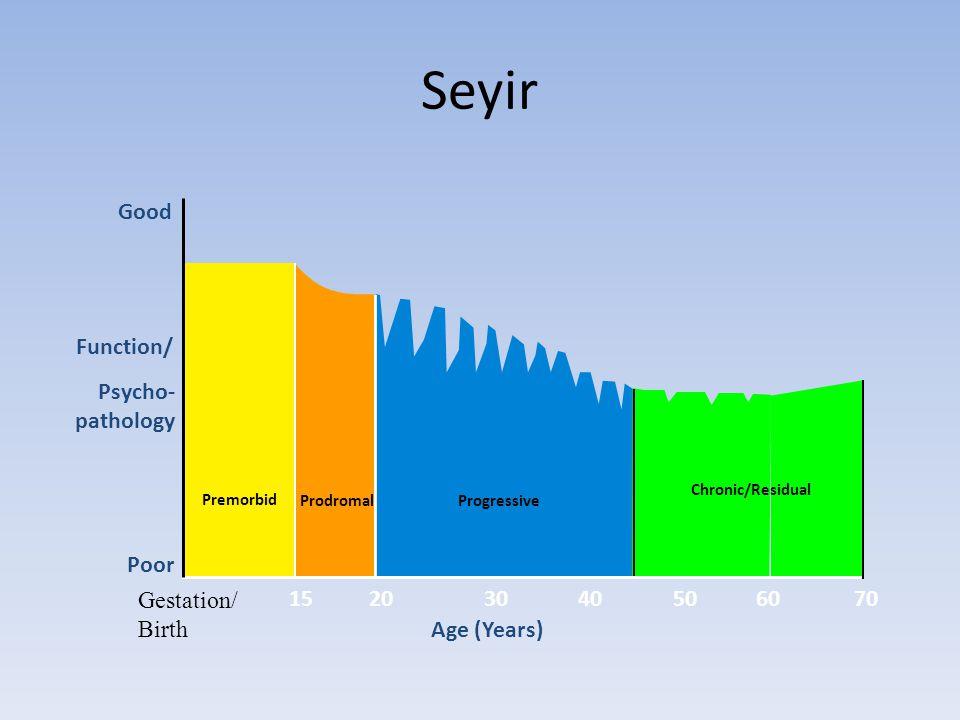 Seyir Good Function/ Psycho- pathology Poor Gestation/ Birth 15 20 30