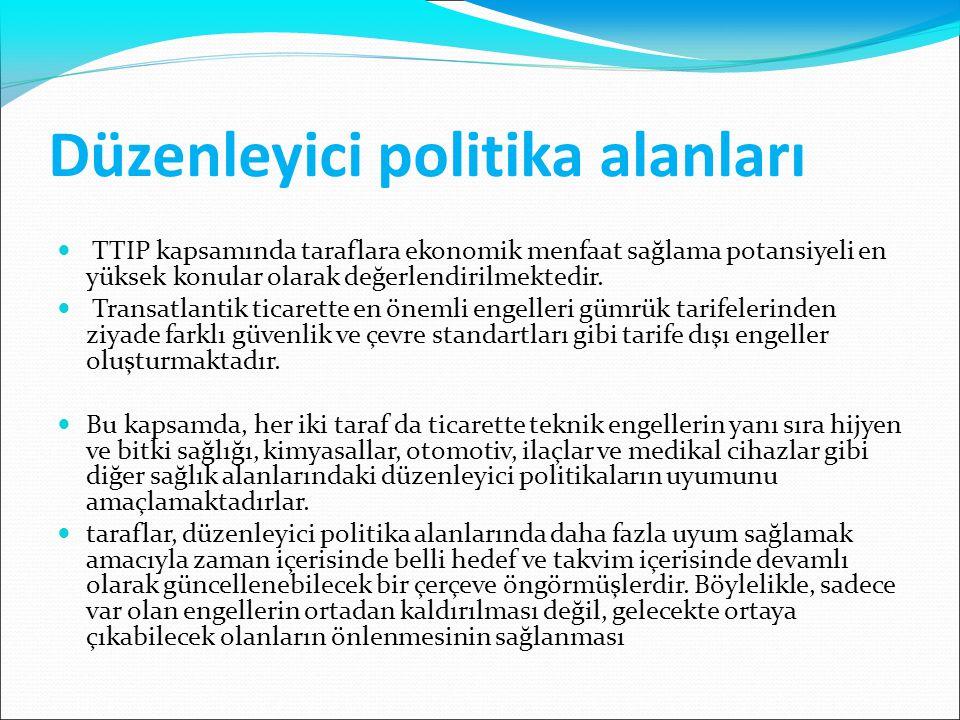 Düzenleyici politika alanları