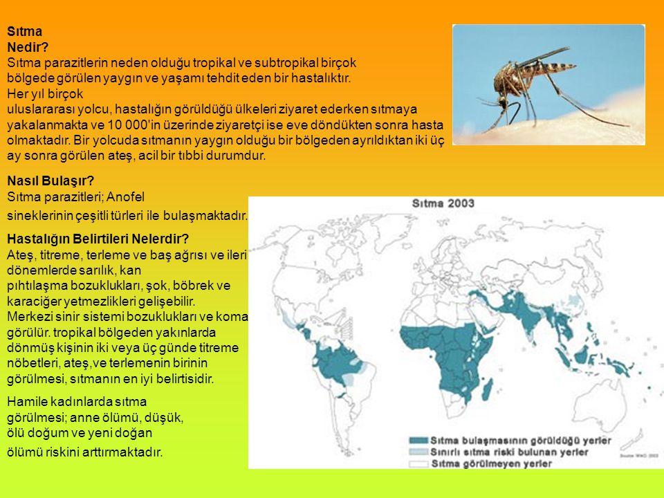 Sıtma Nedir Sıtma parazitlerin neden olduğu tropikal ve subtropikal birçok.