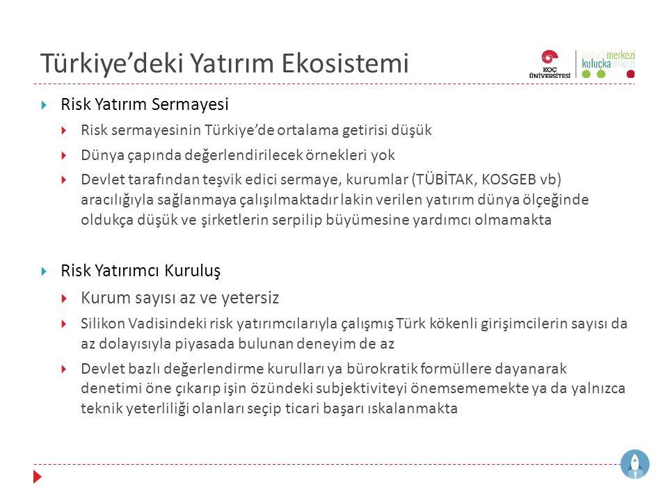 Türkiye'deki Yatırım Ekosistemi