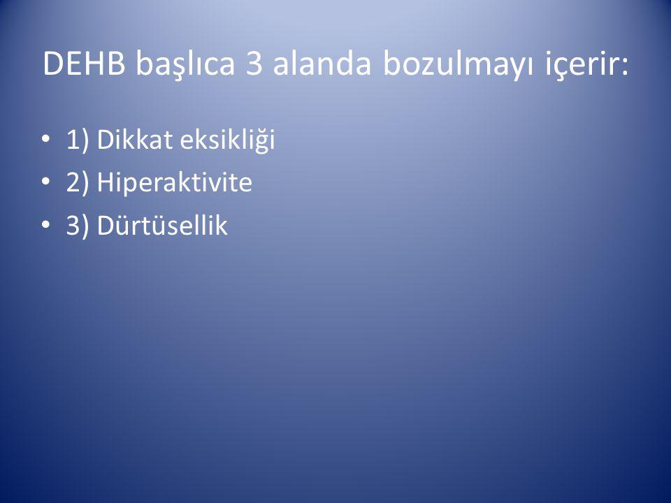 DEHB başlıca 3 alanda bozulmayı içerir: