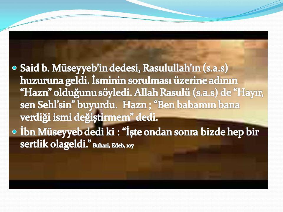 Said b. Müseyyeb'in dedesi, Rasulullah'ın (s. a. s) huzuruna geldi