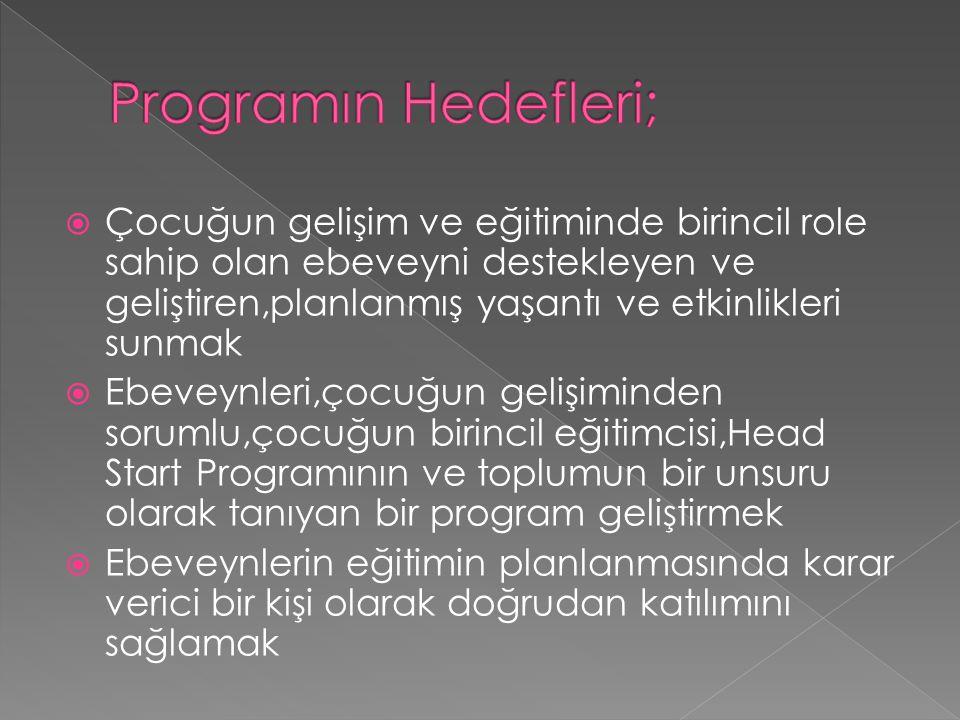 Programın Hedefleri;