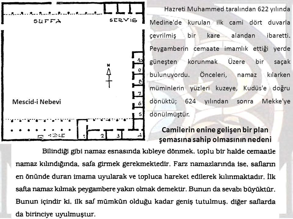Camilerin enine gelişen bir plan şemasına sahip olmasının nedeni