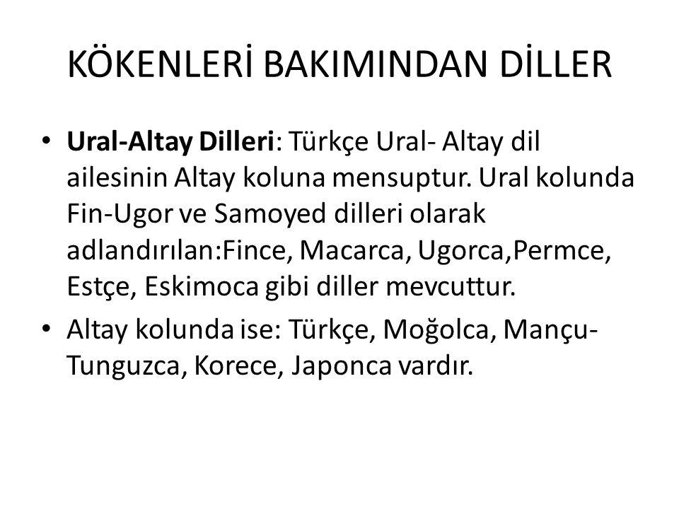 KÖKENLERİ BAKIMINDAN DİLLER