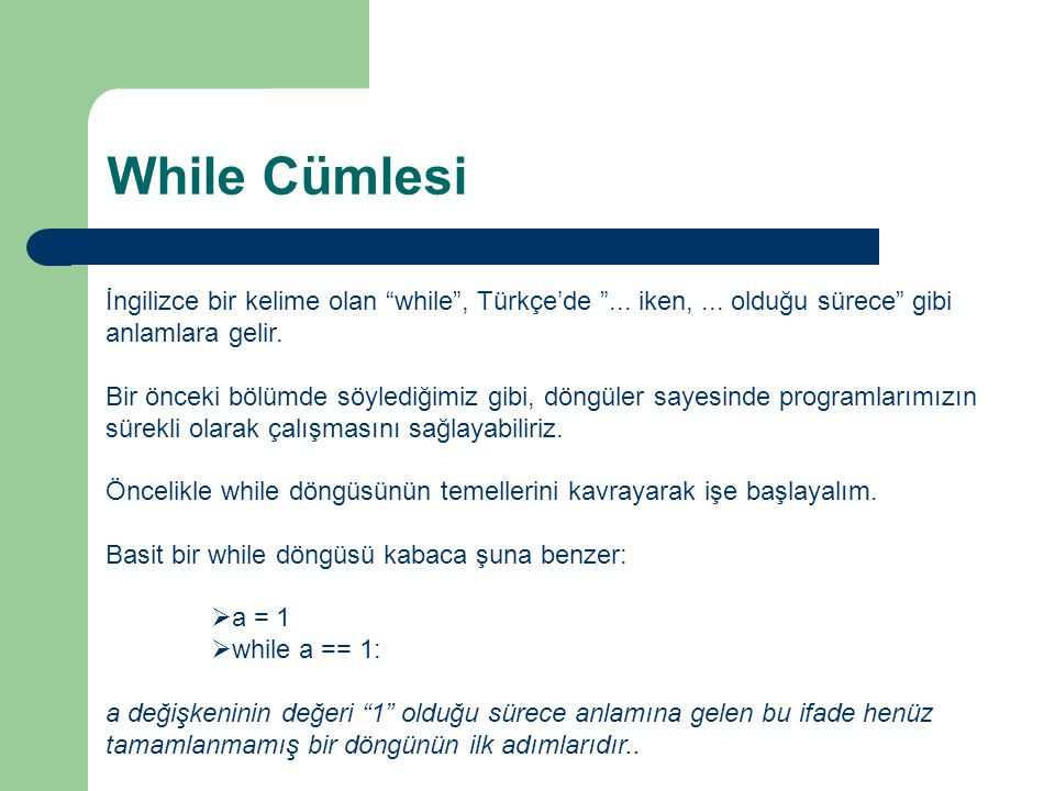 While Cümlesi İngilizce bir kelime olan while , Türkçe'de ... iken, ... olduğu sürece gibi anlamlara gelir.