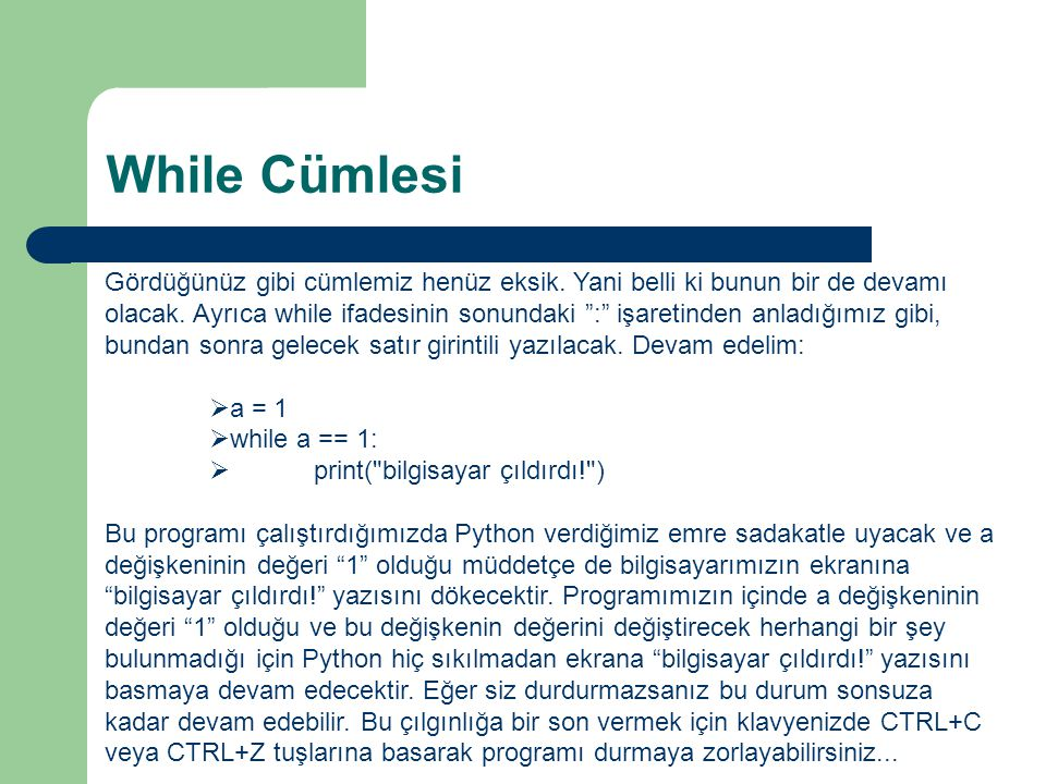 While Cümlesi