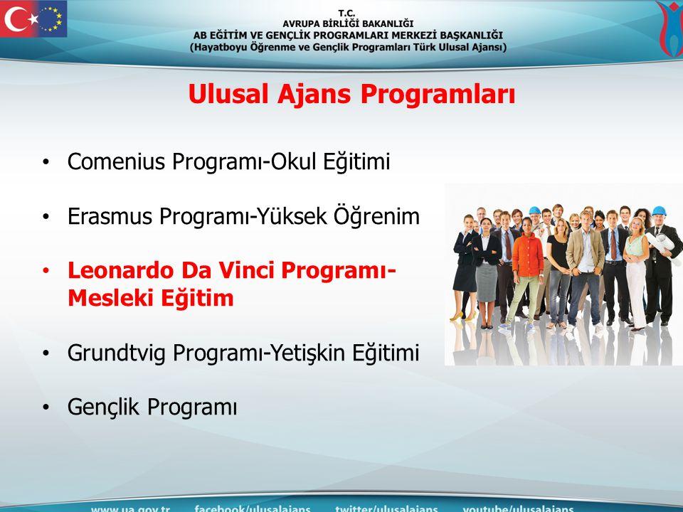 Ulusal Ajans Programları