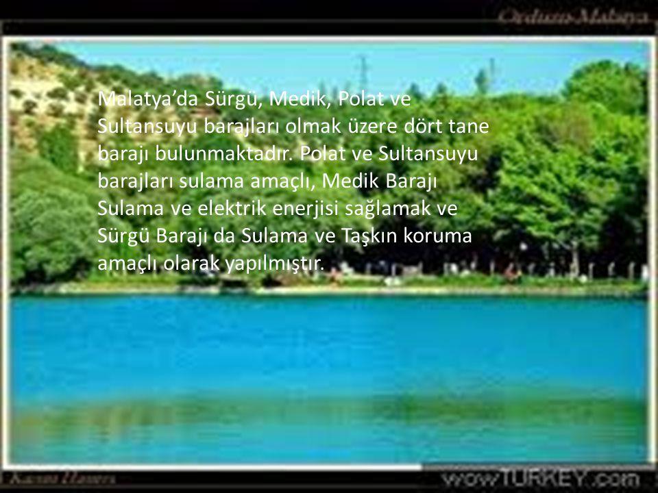 Malatya'da Sürgü, Medik, Polat ve Sultansuyu barajları olmak üzere dört tane barajı bulunmaktadır.