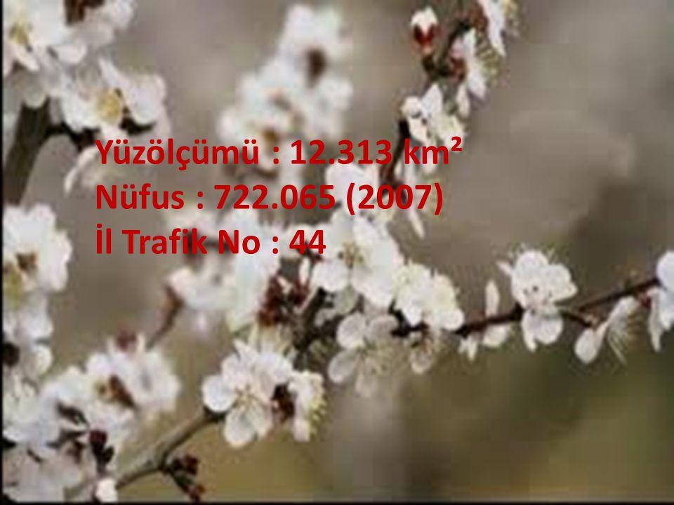Yüzölçümü : 12.313 km² Nüfus : 722.065 (2007) İl Trafik No : 44