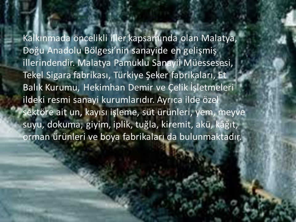 Kalkınmada öncelikli iller kapsamında olan Malatya, Doğu Anadolu Bölgesi'nin sanayide en gelişmiş illerindendir.