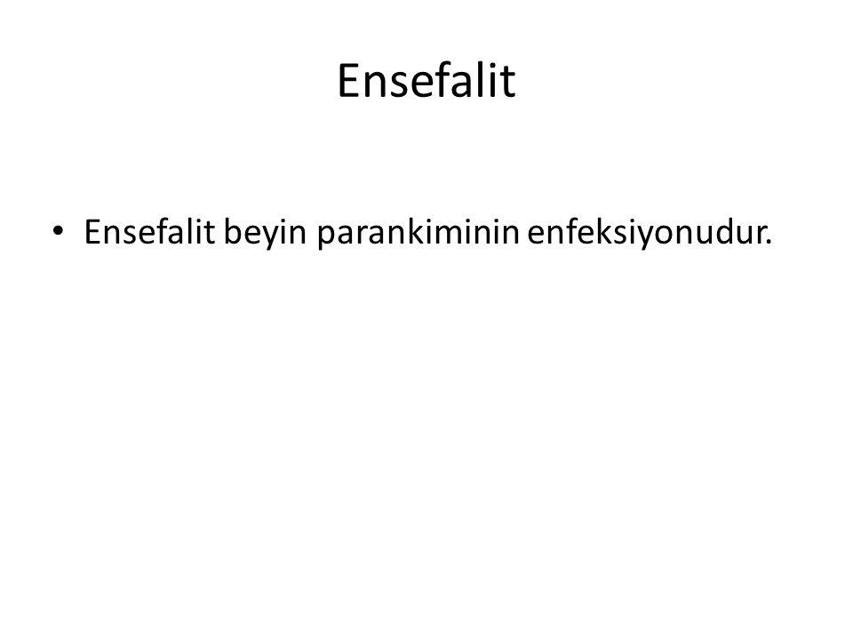 Ensefalit Ensefalit beyin parankiminin enfeksiyonudur.