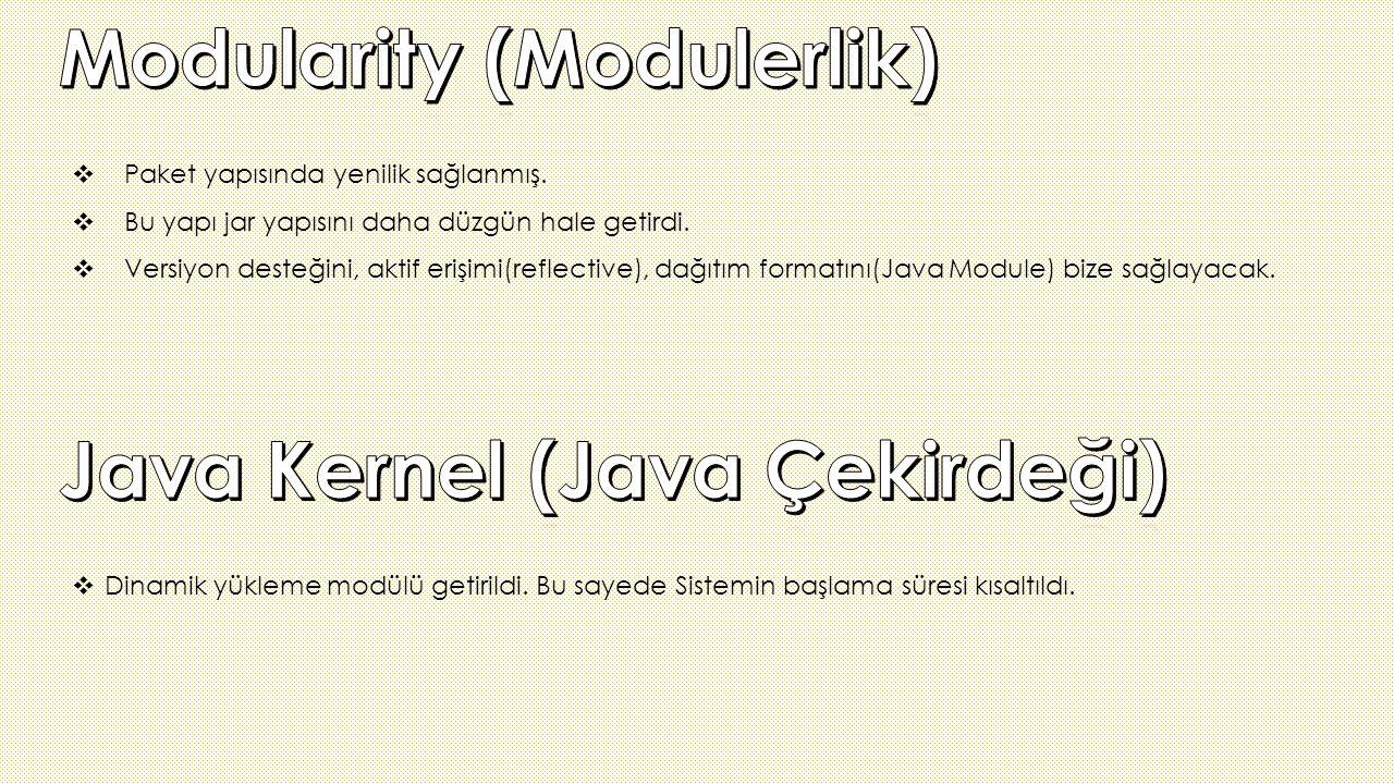 Modularity (Modulerlik)