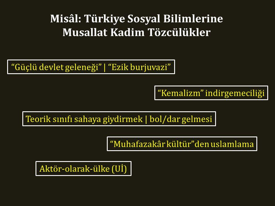 Misâl: Türkiye Sosyal Bilimlerine Musallat Kadim Tözcülükler