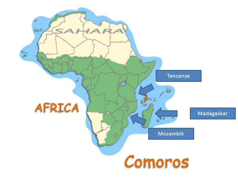 Tanzanya Madagaskar Mozambik