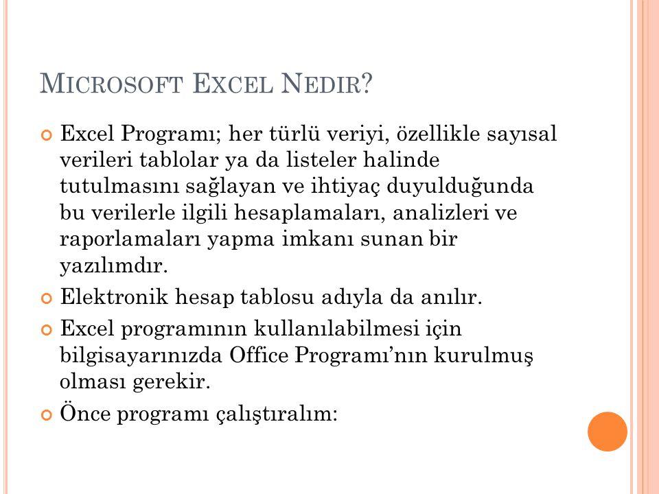 Microsoft Excel Nedir